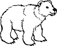 young,bear,coloring book,animal,mammal,cartoon