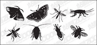 black,white,insect,material,insect drawing
