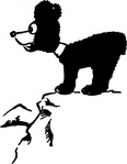 bear,cliff,cartoon,caricature,animal,mammal,cub,media,clip art,externalsource,public domain,image,svg