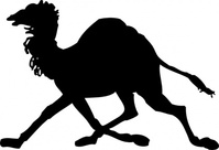 camel,silhouette