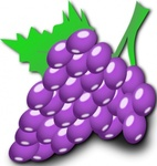 grape,plant,fruit,food,media,clip art,public domain,image,png,svg,grape,grape,grape,grape