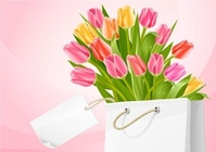 bouquet,tulip,flower,white,bag,tag