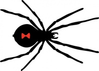 black,widow,spider,media,clip art,externalsource,public domain,image,png,svg,animal,insect,arachnid,black widow,uspto