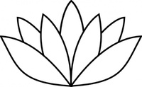 white,lotus,flower