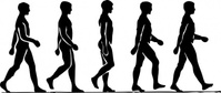 walking,person,silhouette,man,motion,activity,media,clip art,externalsource,public domain,image,png,svg