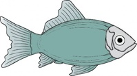 generic,fish,media,clip art,externalsource,public domain,image,png,svg,animal,ocean,uspto