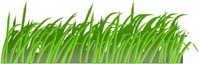 grass,texture,color,nature,green,media,clip art,public domain,image,png,svg