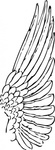 wing,anatomy,bird,media,clip art,externalsource,public domain,image,png,svg