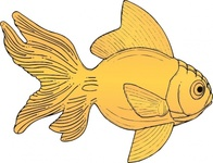 golden,fish,media,clip art,externalsource,public domain,image,png,svg,animal,ocean,collor,yellow,goldfish,uspto