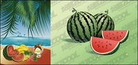 seaside,feast,fruit,material,watermelon