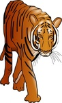 color,tiger,animal,feline,cat,media,clip art,public domain,image,png,svg