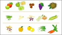 fruit,vegetable,icon