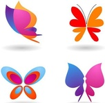 collection,butterfly,icon,symbol