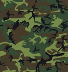 camouflage,pattern,clip