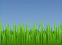 grass,nature,media,clip art,public domain,image,png,svg