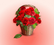 basket,flower,rose