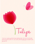 tulip,flower,butterfly,nature,floral,plant,stem,leaf