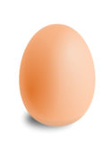 egg,poultry,round,shading,pink,oval,shadow,photorealistic