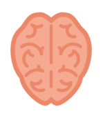 cartoon,brain,simple