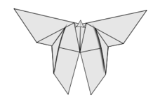 origami,paper,butterfly,lineart,line-art,diagram