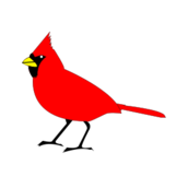 cardinal,remix,2,bird