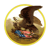 american,eagle,patriotic,symbol,usa