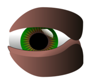 eye,green svg,color,cartoon,media,clip art,public domain,image,svg