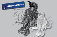 animals,backgrounds & banners,buildings,celebrations & holidays,christmas,decorative & floral,design elements,fantasy,food,grunge & splatters,heraldry,free vector,icons,map,misc,mixed,music,nature,floral,hand drawn,t shirt design,bird,sketchy,sketchy bird,hand drawn bird