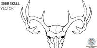 animal,antler,deer,elk,line,skull
